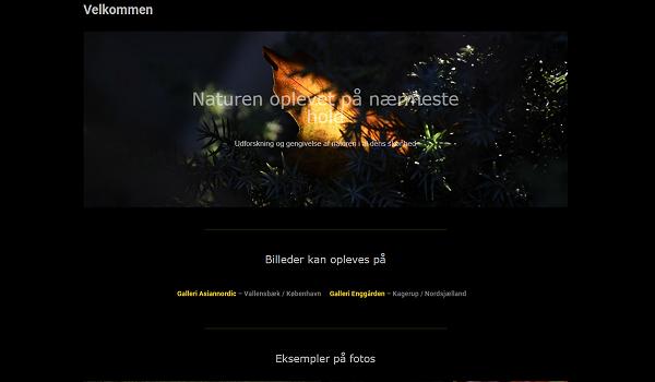 Ny hjemmeside_600