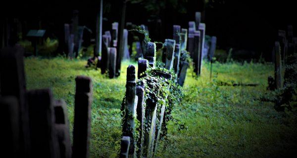 Kirkegård_10